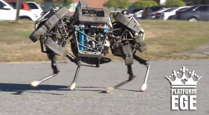 cita-robot